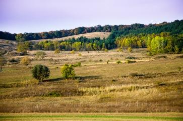 Somewhere near Bahnea, Romania