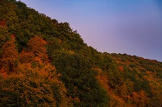 Baciu, Romania