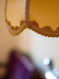 Detail from antique lamp shade