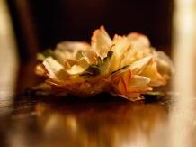 A cloth rose