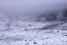 Somewhere between Ludus and Apahida, Romania.
