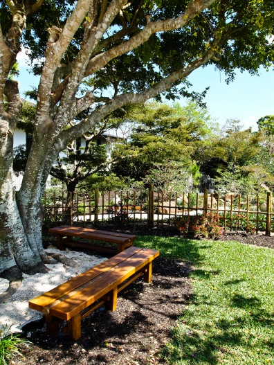 Wooden benches below a large tree, Morikami Museum and Japanese Gardens, Delray Beach, FL, USA.