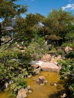 Pond below a waterfall, Morikami Museum and Japanese Gardens, Delray Beach, FL, USA.