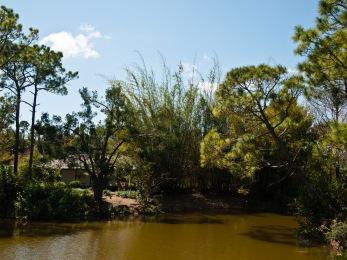 House on island, Morikami Museum and Japanese Gardens, Delray Beach, FL, USA.