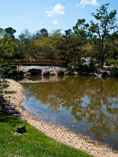 Bridge over lake, Morikami Museum and Japanese Gardens, Delray Beach, FL, USA.