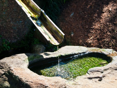 Water drips from a bamboo spout, Morikami Museum and Japanese Gardens, Delray Beach, FL, USA.