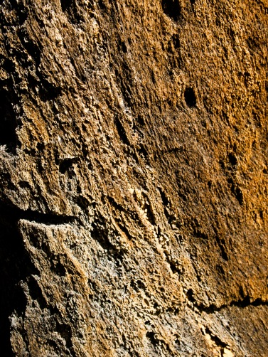 Rock texture, Morikami Museum and Japanese Gardens, Delray Beach, FL, USA.