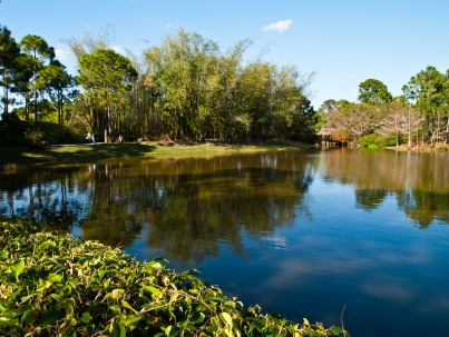 Lake, Morikami Museum and Japanese Gardens, Delray Beach, FL, USA.