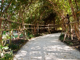 Wonderful path below an arch of tree branches, Morikami Museum and Japanese Gardens, Delray Beach, FL, USA.
