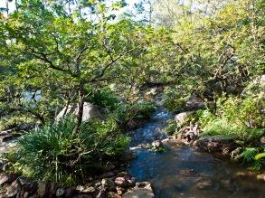 Stream and waterfall, Morikami Museum and Japanese Gardens, Delray Beach, FL, USA.
