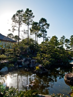 Pond, Morikami Museum and Japanese Gardens, Delray Beach, FL, USA.