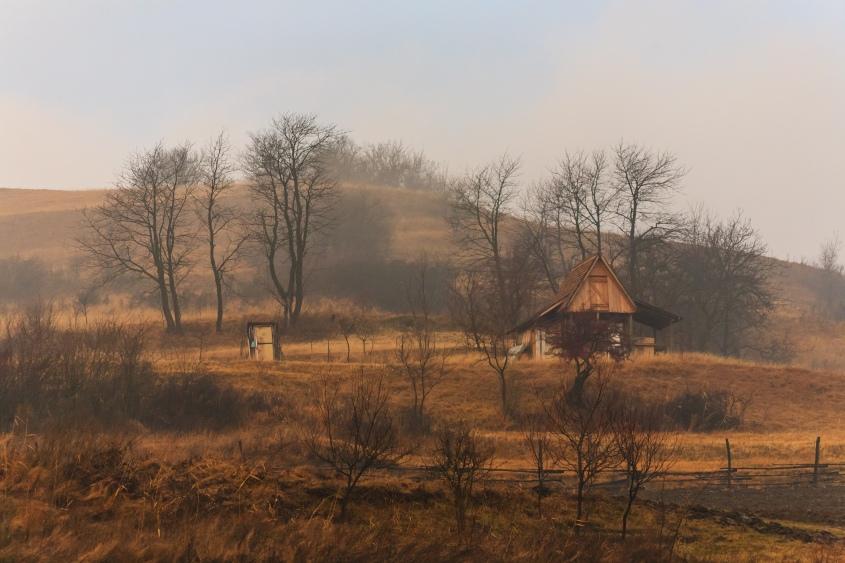 Somewhere between Slimnic and Agârbiciu, Transilvania, Romania